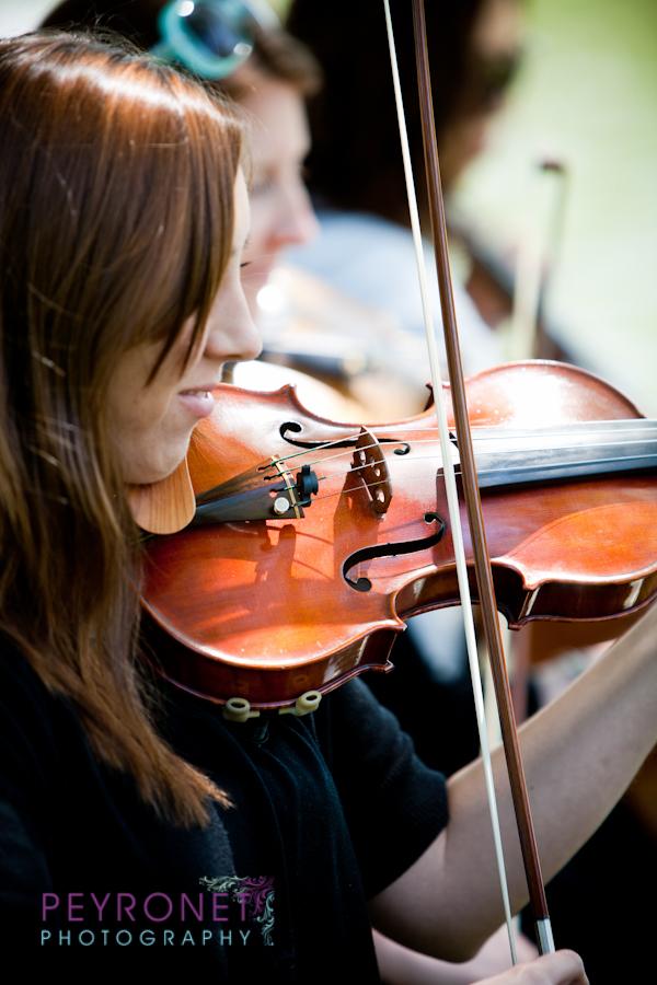 Serenata Strings 6